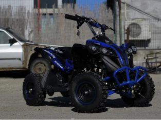 ATV electric pentru copii Eco Avenger 1000W 36V Cu stickare albastre