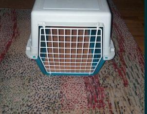 Vind cutie pentru pisici sau catelusi