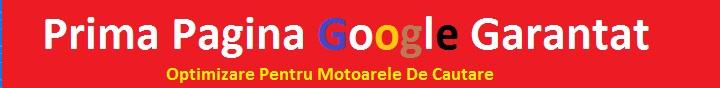 googlefirstpageseo-banner-com