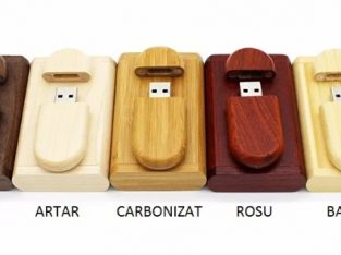 Stick USB + cutie lemn cu magnet