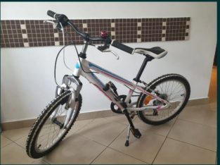 "Bicicleta copii Cross Speedster 20"""