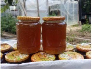 Vând miere albine recoltată pe 04/06/2020