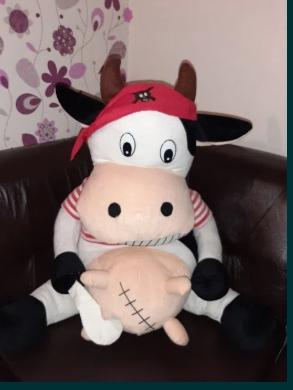 Vaca pirat uriasa 85 cm.