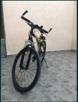 Bicicleta bulls Pro 9.00 FS