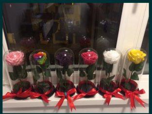Trandafir criogenati conservati cadou