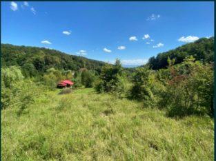 Vand cabana cu teren intravilan zona turistica Grosi – Valea Gepisului