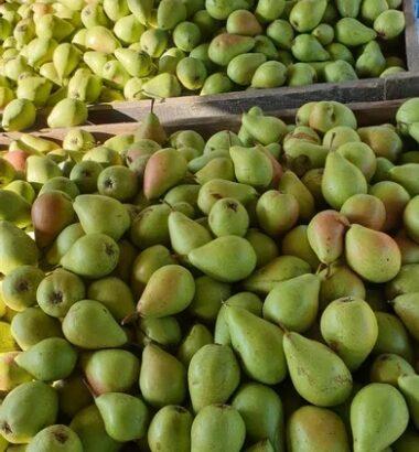 Fructe proaspete de vanzare