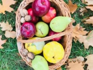 Pere 4 lei kg Mere Suc Natural de Mere Fructe Bio Valcea