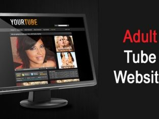 Realizam site-uri ( platforme ) web ADULT gen PornHub sau Xvideos