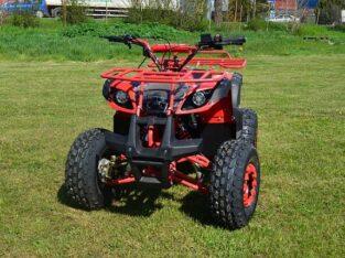 OFERTA DE VARA : ATV NITRO MOTORS GRIZZLY QUAD M8, 2021, AUTOMAT