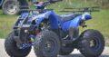 OFERTA DE VARA : ATV KXD MOTORS GRIZZLY XXL, 2021, SEMI-AUTOMAT