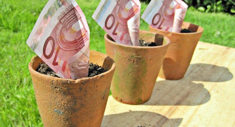 Împrumuturi cu dobândă mică către companii și persoane fizice